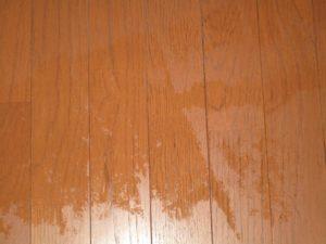 床がぬれました
